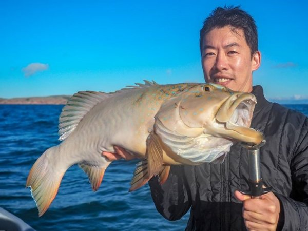 Fish City Townsville Fishing Charters